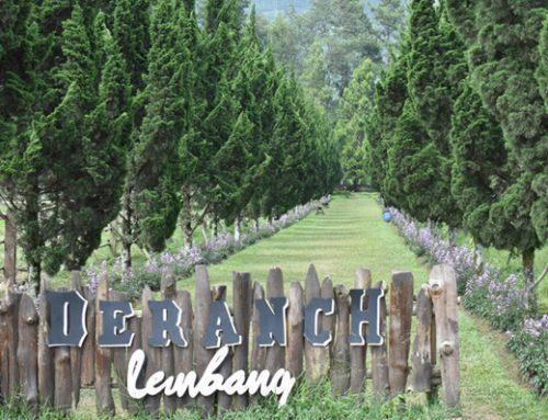 Pilihan Paket Tour Bandung dengan Pemandangan Alam yang Seru